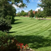 """<a href=""""https://greenscapesky.com/ground-maintenance-services/commercial-mowing/"""">Mowing</a>"""