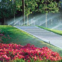 "<a href=""https://greenscapesky.com/ground-maintenance-services/irrigation/"">Irrigation</a>"