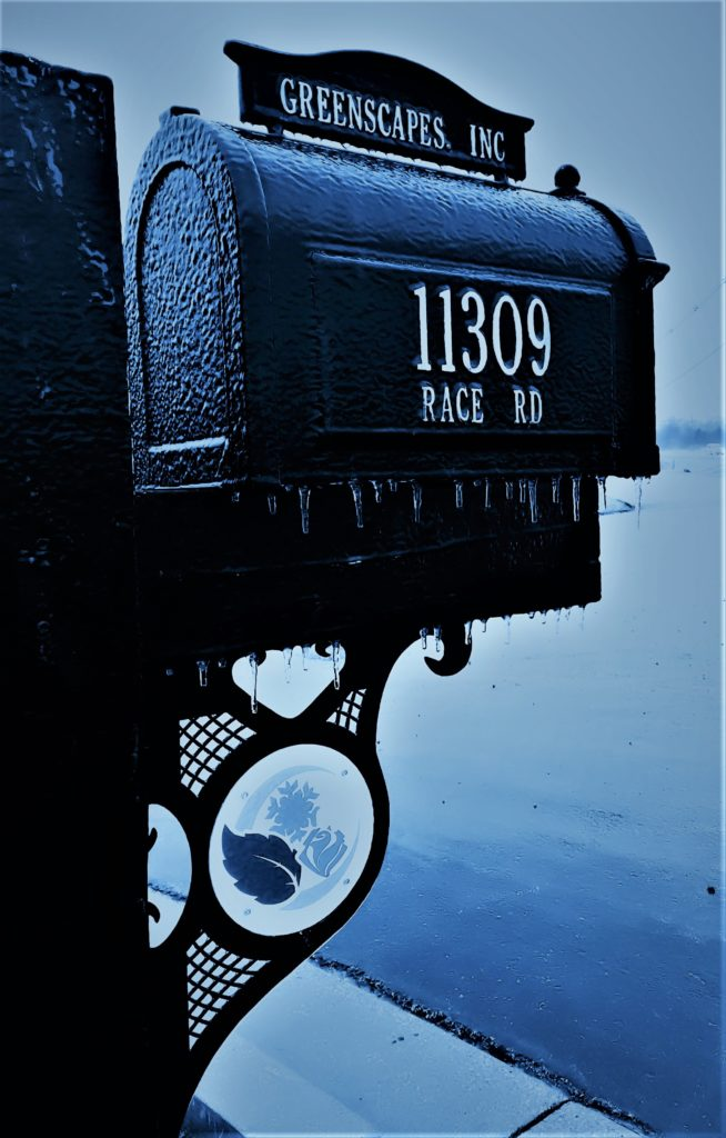 GreenScapes Mail Box